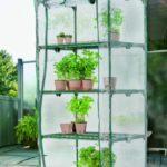 Zadbaj o ogród na wiosnę razem z Netto