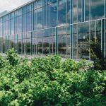 Ekologiczne trendy w architekturze i designie na rok 2020