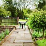 Masz ogródek działkowy? O tym musisz pamiętać jesienią